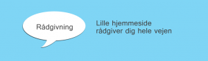 raadgivning_om_hjemmeside